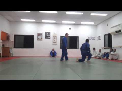 Shawn's brown belt kata test