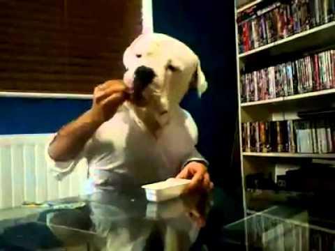 Xxx Mp4 Person Dog Eating Xxx 3gp Sex