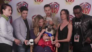 Doug the Pug Interviews SUPERGIRL at Comic-Con 2017 #WBSDCC