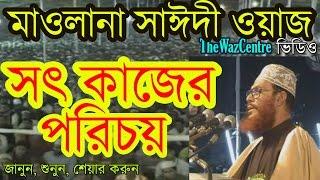 সৎ কাজের পরিচয়। Maulana Delwar Hossain Saidi Waz Video. Bangla waz