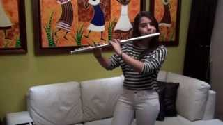 Wizard - Martin Garrix Flute Cover