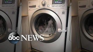 Parents say toddler got stuck in washing machine