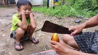 Trái dừa nước quê tôi [Miền Tây TV]