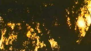 Lake Consequence Trailer 1992