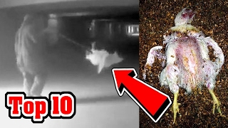 10 SHOCKING Facts McDonald's Doesn't Want You To Know