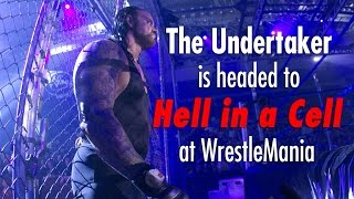 What you need to know about The Undertaker and Hell in a Cell - What you need to know...