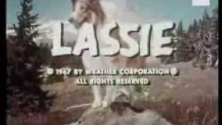 Séries Anos 60 - Rin-tin-tin, Zorro, Lassie e outras