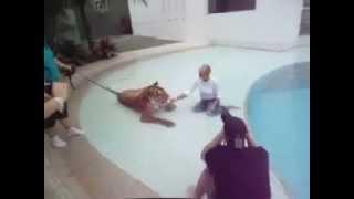 Xuxa se diverte com o tigre Tom em sua casa.
