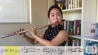 Flute Lesson - Approaching Mozart's Flute Concerto No. 2