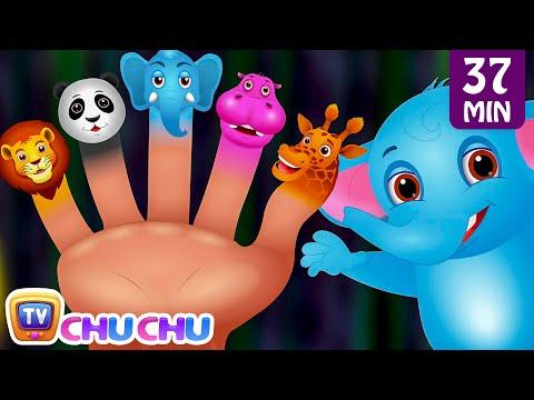 Finger Family Nursery Rhymes Animal Finger Family Songs Collection Learn Wild Animals ChuChuTV