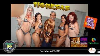Talento em Foko focaliza AS TIGRESAS do programa Joao Inacio Show da TV Diario Fortal