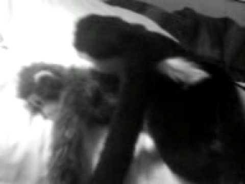 Xxx Mp4 Monkey Sex 4 3gp Sex