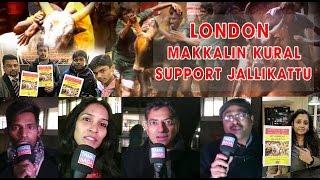 ஜல்லிக்கட்டுக்கு ஆதரவாக லண்டன் தமிழ் மக்களின் குரல்  | Jallikattu | Support Jallikattu