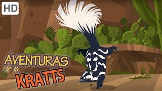 Aventuras com os Kratts - Você Foi Gambá!
