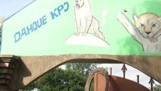 Deuil dans le Couffo : Dahoue Doto, le Roi du Gogohoun n'est plus