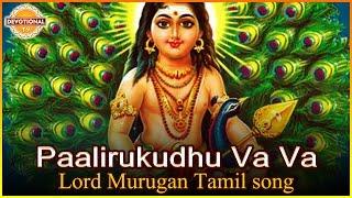 Lord Murugan Tamil Devotional Songs | Paalirukudhu Va Va Tamil Songs | Devotional TV