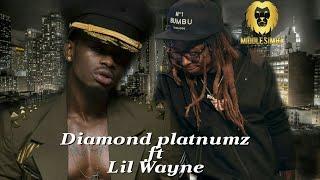 Diamond platnumz ft Lil Wayne-Bumbu(New Video Alert)