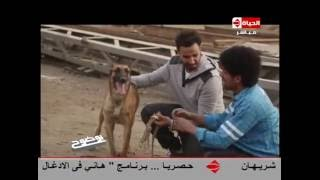 """بوضوح - عمرو الليثي لــ فريق فيلم كلب بلدي : يوجد """" غلطة """" فى الفيلم .. تعرف على التفاصيل"""
