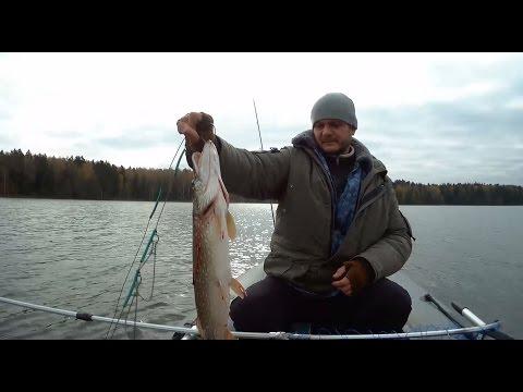 щучья рыбалка видео на речке видео