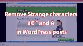 Remove Strange characters ' and  in WordPress posts