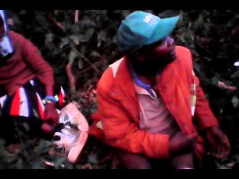 Kenya, Kisii Sex @erera