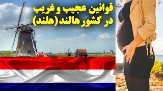 9 تا از عجیب ترین و غیر معمولی ترین قوانین در کشور هالند