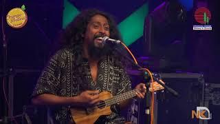 Ya Ya Mayaya Remix | Fiddler's Green | Dambuk Orange Festival | Arunachal Pradesh