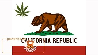 California - Mr. G Ft. Stonebwoy - 2017