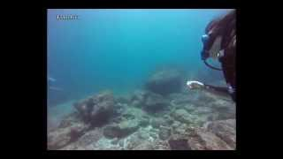 Discover the Underwater World - Weh Island, Acheh
