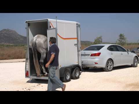Carro Remolque transporte 1 caballo