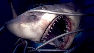 SHARK ATTACK!! Playstation VR Worlds Gameplay HD