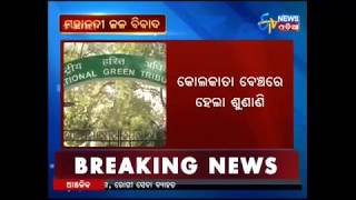 NGT stay on six projects by Chattisgarh on Mahanadi - Etv News Odia