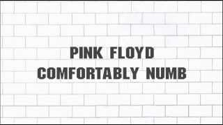 Pink Floyd - ''Comfortably Numb'' 2011 - Remaster - (5.1) - [SACD] - (2012)