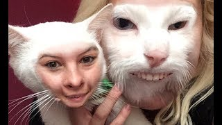 Funny Cats And Dogs Face Swap With Owners - Try Not To Laugh Or Grin
