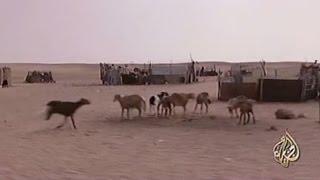 Al Jazeera :  الصحراء الغربية