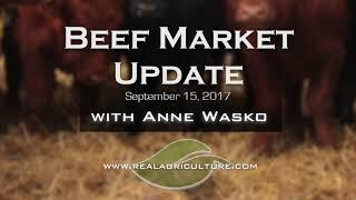 Beef Market Update  -  Sept 15, 2017