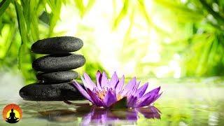 Zen Music, Relaxing Music, Calming Music, Stress Relief Music, Healing Music, Meditation Music☯3535