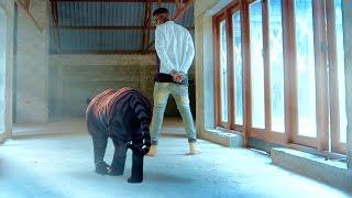 Edu Boy  - NAIEE - ft. Bill Nass
