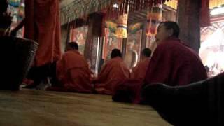 Chanting Monks in Bhutan