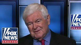 Gingrich on Tlaib visiting Israel, Trump
