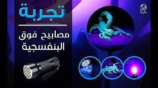 مصابيح  فوق البنفسجية  Alloy Ultra Violet LED Flashlight