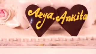 ARYA & ANKITA WEDDING HIGHLIGHTS