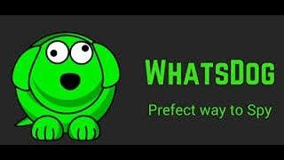 Whatsapp Hacking on Whatsdog Tamil Tutorial