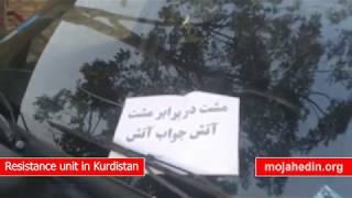 Resistance unit in Kurdistan