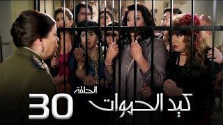 مسلسل كيد الحموات الحلقة | 30 | Ked El Hmwat Series Eps
