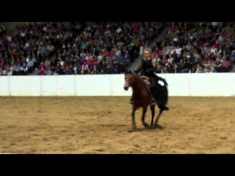 Reining stacy westfall