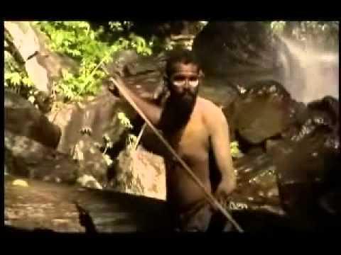 Discovery Channel A origem do homem The real Eve Dublado PT BR