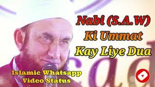 Nabi Ki Ummat Kay Liye Dua ❤️ Maulana Tariq Jameel ❤️ Islamic Whatsapp Status Video