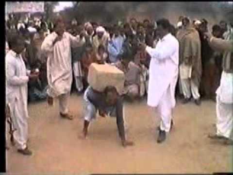 Camel dance in wedding