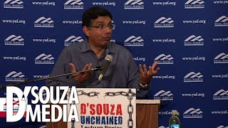 D'Souza Perfectly Sums Up Illegal Immigration